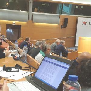 Tiina Sandberg taking floor in General Assembly of European Left.
